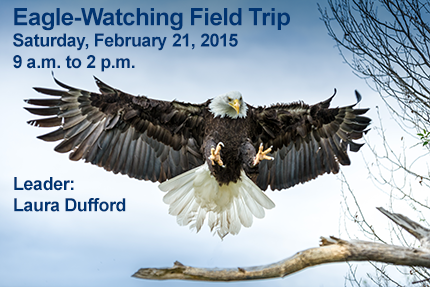 Eagle-Watching Field Trip, Sat., Feb. 21, 2015, 9 a.m. to 2 p.m.